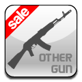 Other Gun (Clearance)